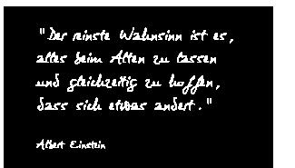 """""""Der reinste Wahnsinn ist es,  alles beim Alten zu lassen und gleichzeitig zu hoffen,  dass sich etwas andert.""""  Albert Einstein"""